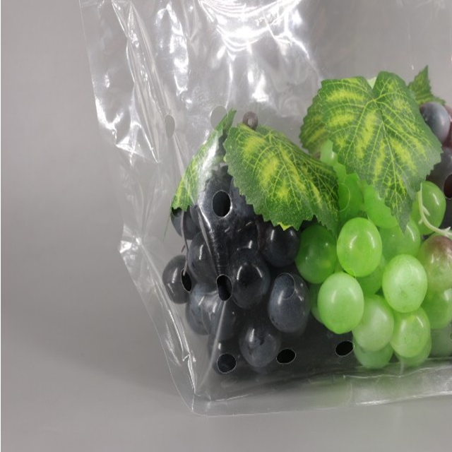 Custom Printed OPP CPP Laminated Ziplock Plastic Food Packaging Bag For Fruits/Vegetables 5