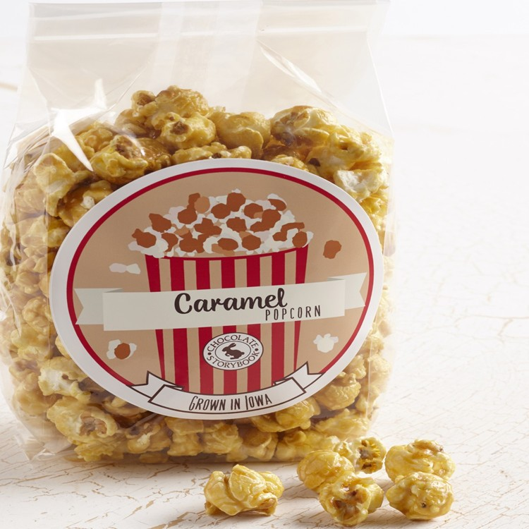 Manufacturer Large Clear Popcorn Ziplock Packaging Plastic Bag
